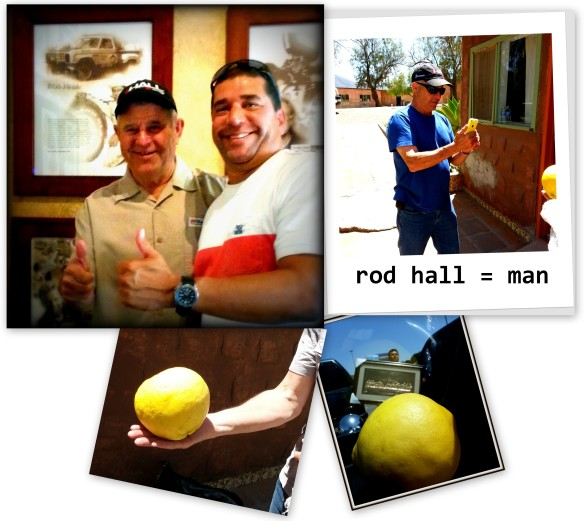 Rod Hall Collage